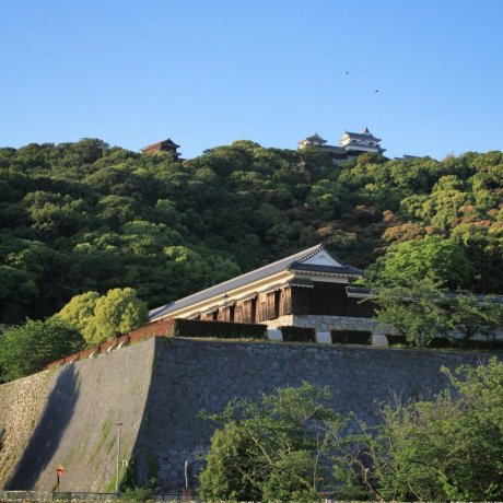 A Walk Around Matsuyama Castle Park