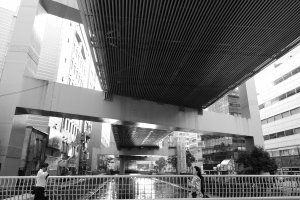 The Metropolitan Expressway K2 Mitsuzawa Route hovers above Katabiragawa (帷子川)