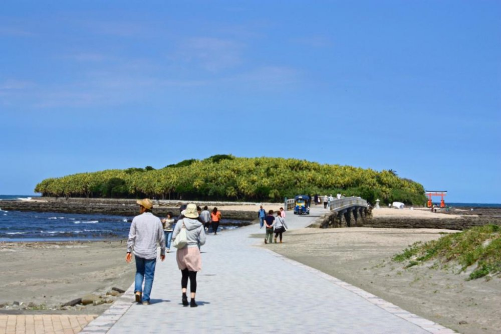 Aoshima is a short drive or train journey south of Miyazaki City. Walk across this bridge to reach the island.