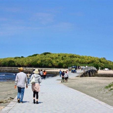 Aoshima Rocks