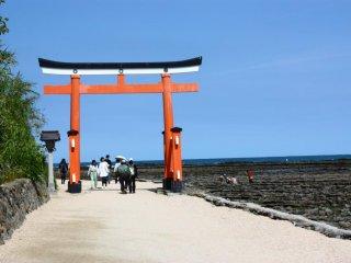 Ce grand torii rouge marque l'entrée de Aoshima Jinja