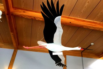 Many life size models to help bird watchers spot the storks