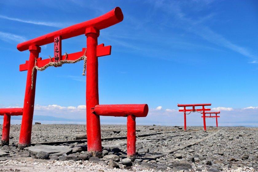 Torri gates at Ōuo Shrine