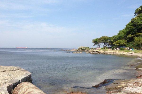 여기는 観音崎(칸논쟈키)라는 곳입니다. 요코스카 시내에서 버스로 30분 정도 달리면 이렇게 확트인 바다가 나옵니다.