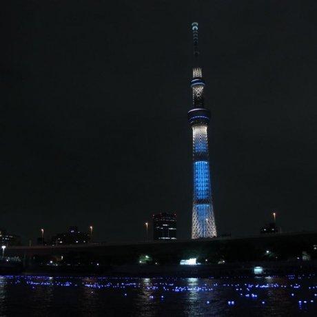 "Lễ hội ""Đom Đóm"" Tokyo Hotaru"