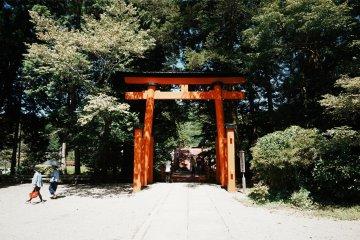The red tori gates mark the entrance into the spiritual world