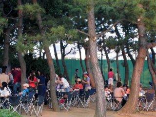Bạn bè họp mặt cùng nhau trong một bữa tiệc nướng mùa hè dưới những hàng cây.