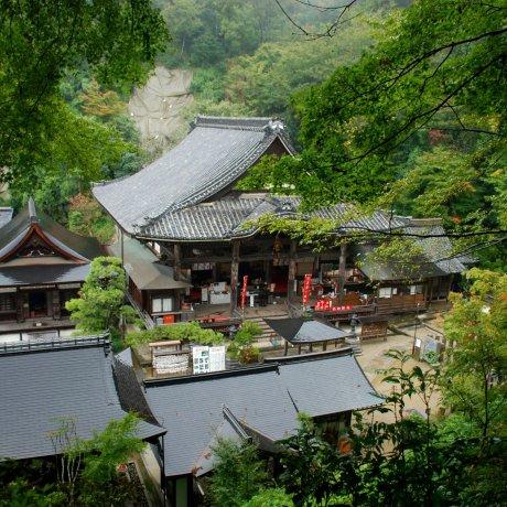 Pèlerinage de Nara-Yamato