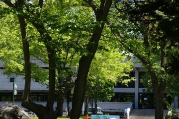 Art in the park at Hokkaido University Campus