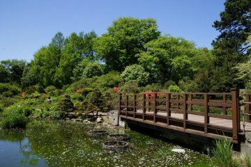 The bridge leading to the massive gardens run by Hokkaido University