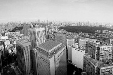 Panoramic View over Shinjuku Gyoen