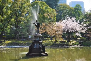 One of the lovely sights in Hibiya Park