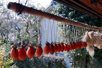 Jewel-like persimmon