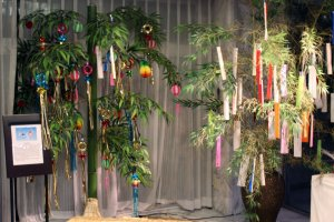 The reception area was decorated with colorful Tanabata decorations during my visit.