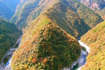 Autumn in Shikoku