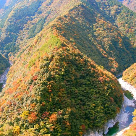 Musim Gugur di Shikoku