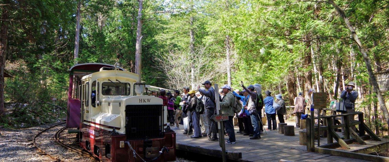Le chemin de fer de la forêt d\'Akazawa