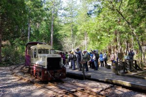 Le chemin de fer de la forêt d'Akazawa