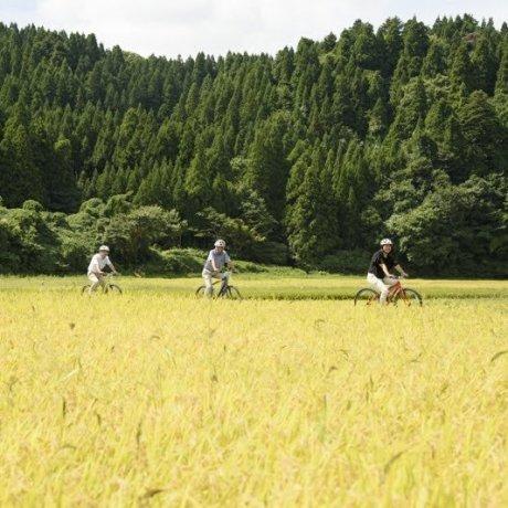 Cara Hidup Satoyama di Wajima, Noto