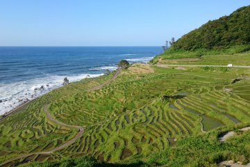 Shiroyone Senmaida Rice Terraces