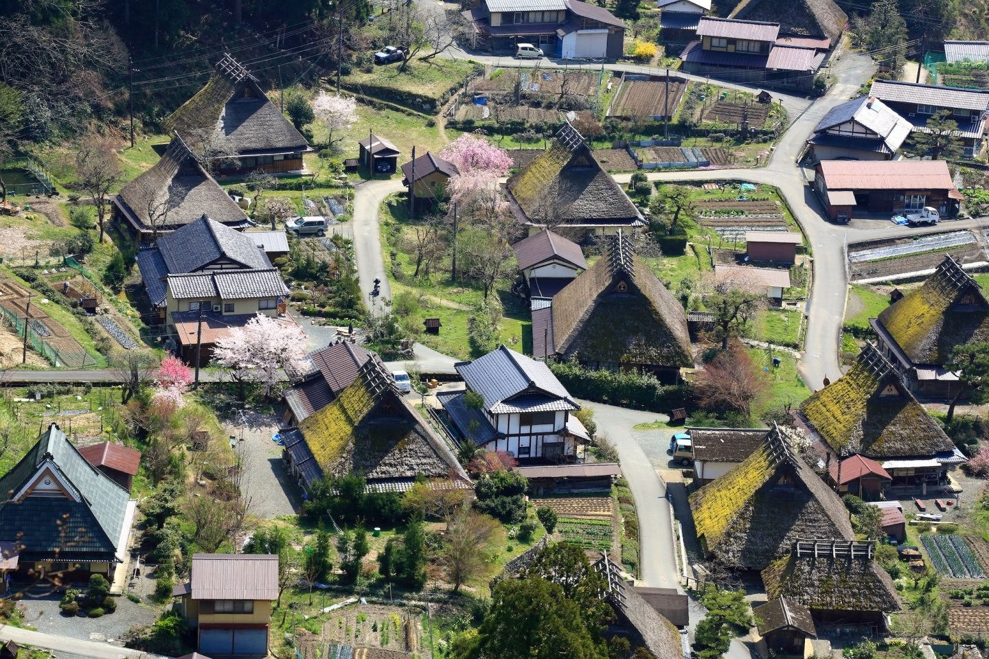 Kayabuki no Sato in Spring