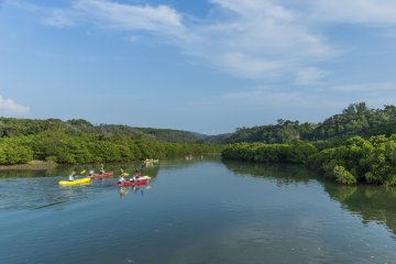Experience Hirugi Park at Higashi Village