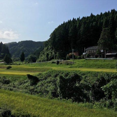 Cuộc sống trang trại thời xưa: Shunran-no-Sato
