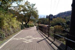 Caminhando descontraidamente pela colina abaixo