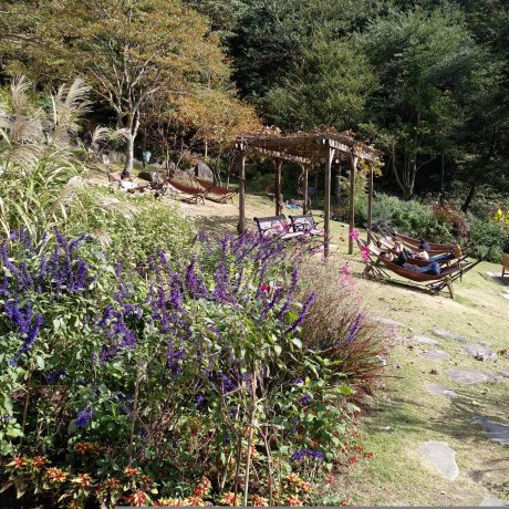 Um Jardim Maravilhoso para Toda a Família