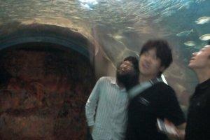 마치 물 속에 있는 듯한 해중터널!