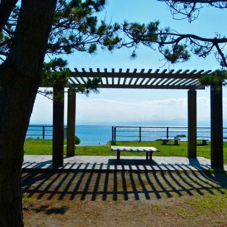 Công viên Hayama