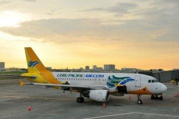 宿务太平洋航空
