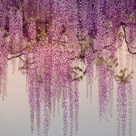 An exhibition of Yoshimura Yoshio