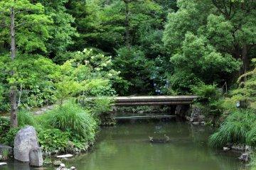 Kokura Castle Japanese Garden