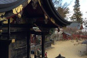 Musashi Mitake Shrine is serene and beautiful
