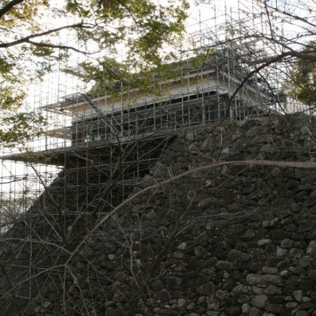 Kameyama Castle