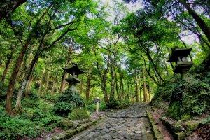 鸟取县的十大景点