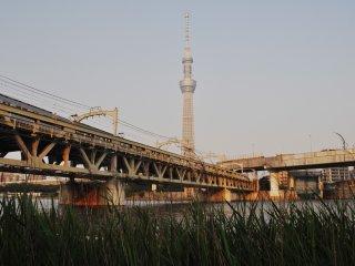 Le train traverse la rivière en parallèle au pont Azumabashi