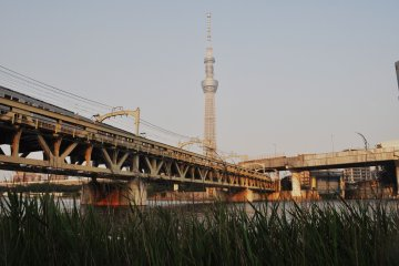The train tracks cross the river in parallel to the Azumabashi Brudge.