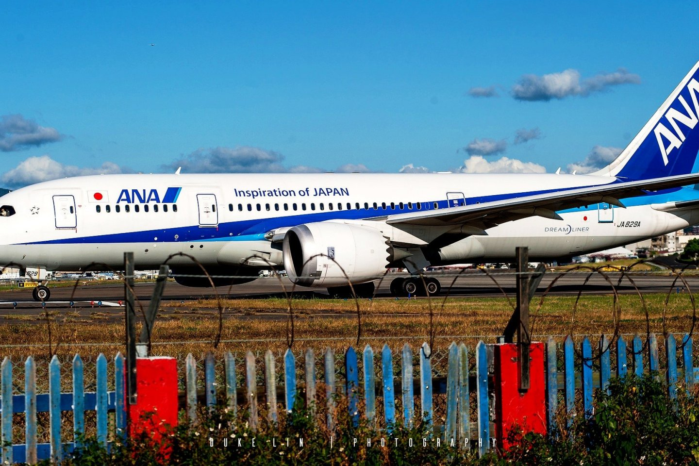 ANA 787-800 Dreamliner