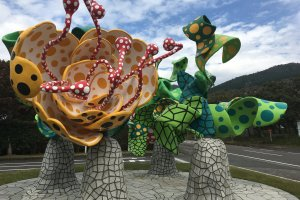 """Flowers of Shangri-la"" symbolizes life, hope and the soul"