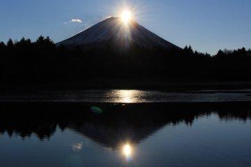 Lake Yamanaka Diamond Fuji Weeks