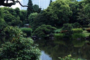 東京都心の日比谷公園