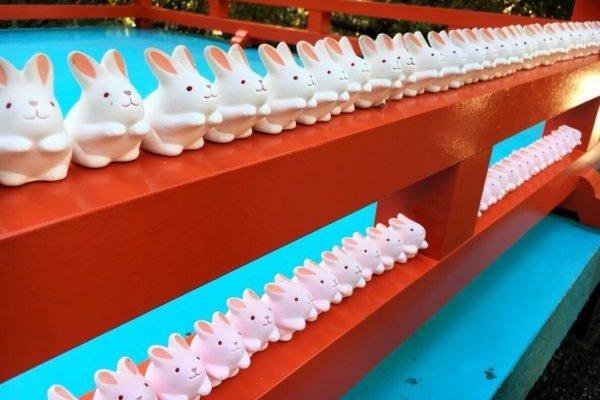 Barisan kelinci yang manis dan menggemaskan