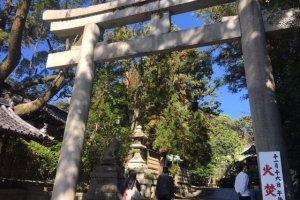岡崎神社の入り口。ここではまだうさぎさんの姿はないので、一見普通の神社に見えます。
