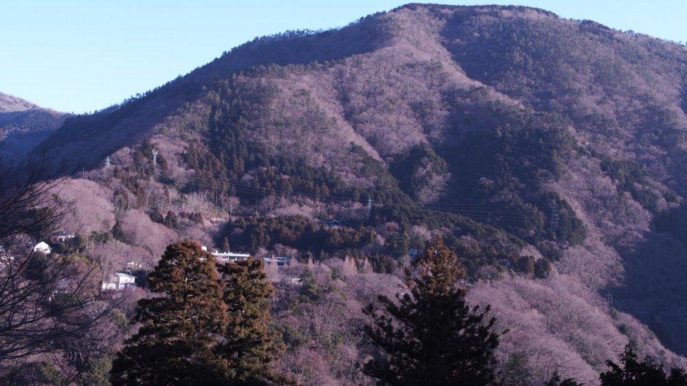 Shadows on the hills; Myojogatake in the morning