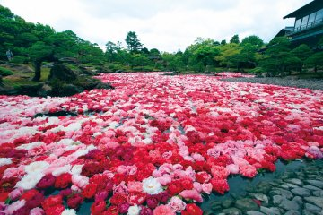 Adachi Museum of Art and Yuushien Gardens