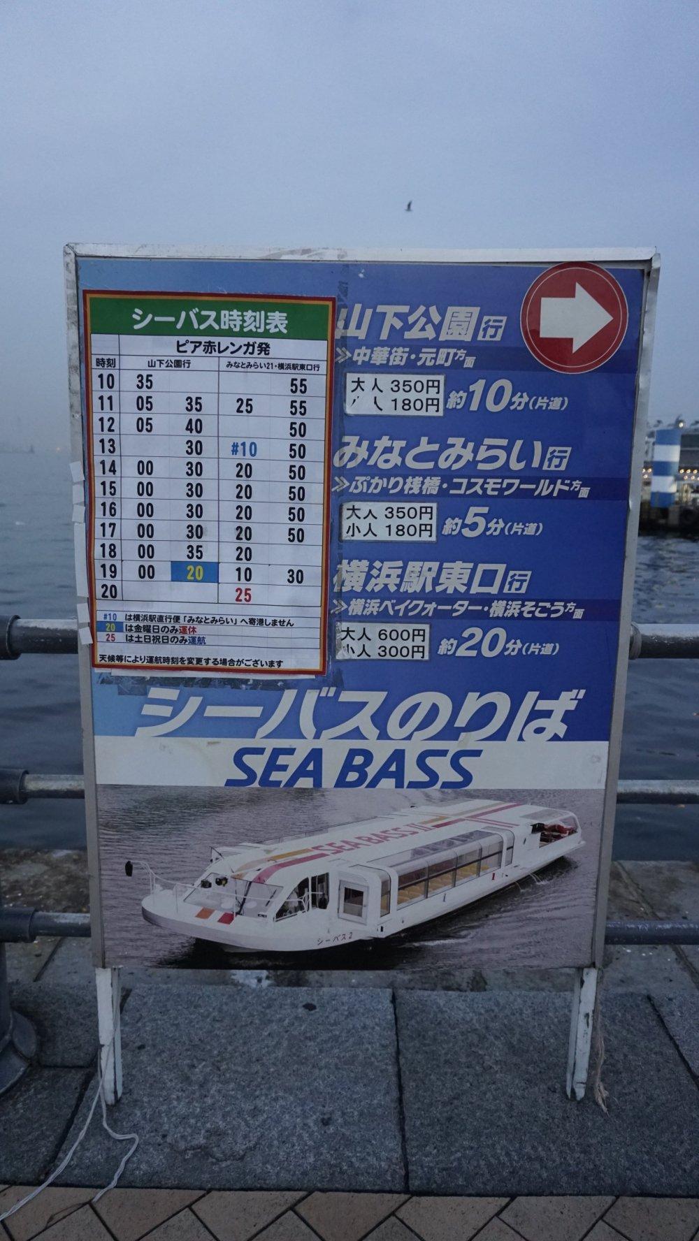 Sea Bass information board