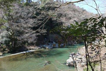 Hidden Gems in Western Tokyo