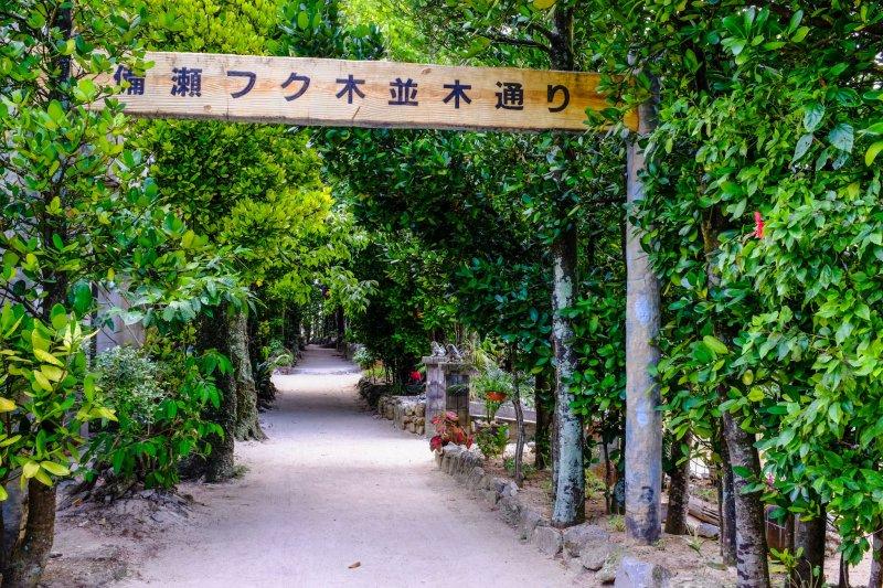 The entrance to Bise Village